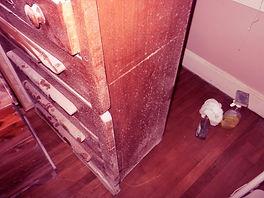 Moldy Furniture.jpg
