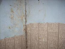 Moldy Wall.jpg