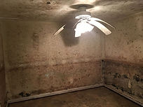 Moldy Room.jpg