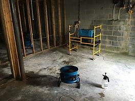 Moldy Room # 3.jpg
