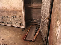 Moldy Room # 1.jpg