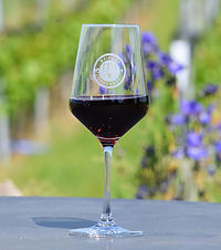Unser Ostsee- Wein vom Ingenhof aus Schleswig- Holstein