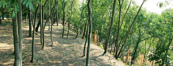 biodiversita3.jpg