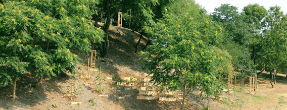 biodiversita1.jpg