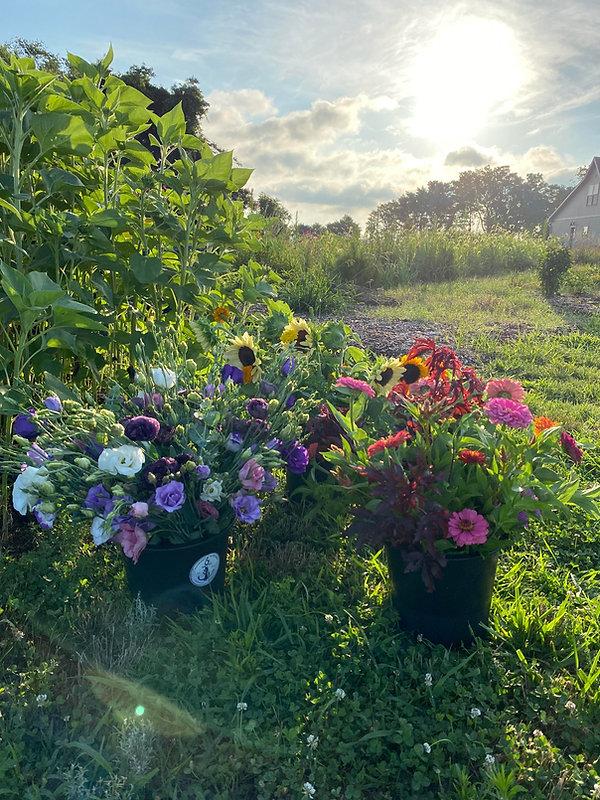 bucket of flowers1.jpg