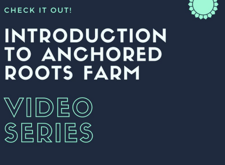 Anchored Roots Farm Introductory Video Series
