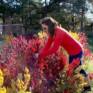 Fresh Flower Workshops