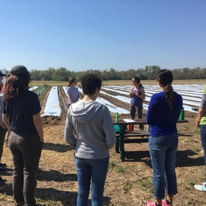 In the News-Hollywood farm hosts valuable workshop