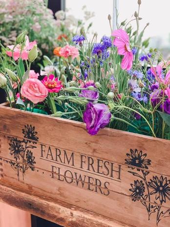 fresh flowers summer.jpg