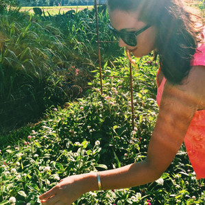 In the News- Anchored Roots Farm; A Budding Example of Full-Cycle Farming