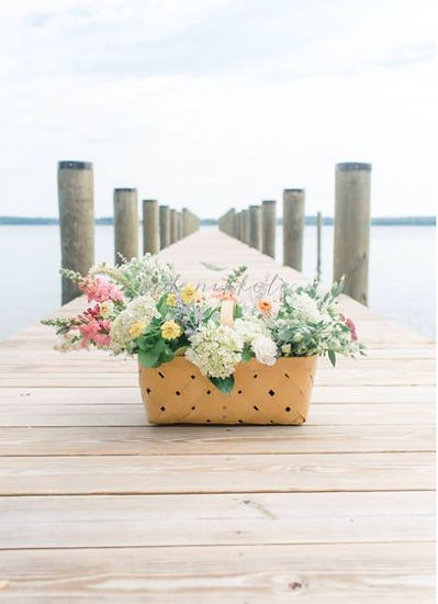 flowers on the dock.JPG