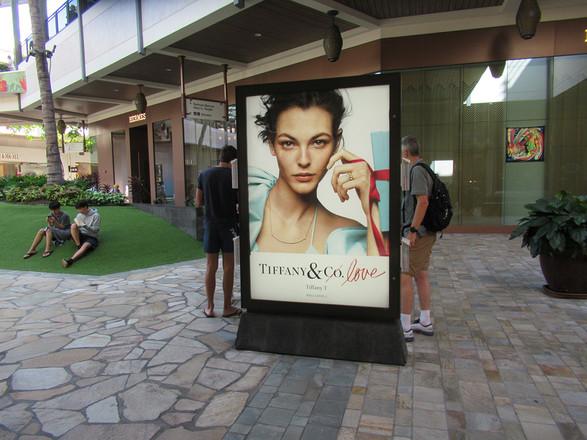 Tiffany & Co Backlit Display