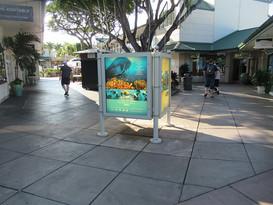 Atlantis Backlit Display