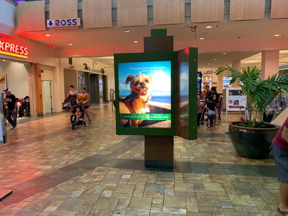 Hawaii Humane Society Campaign