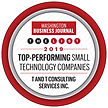 The Professional Small Technology Companies