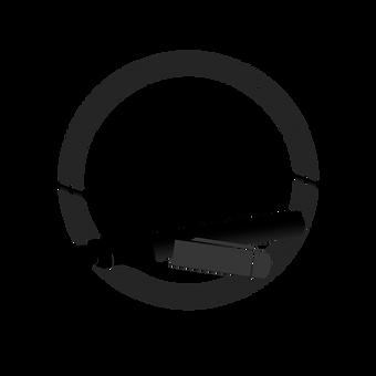 Acamea_Logo.PNG