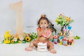 Smash Cake Photography