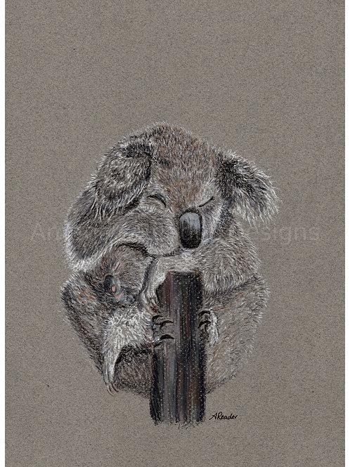 Koala 3 Print