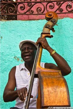 Musico Cubano