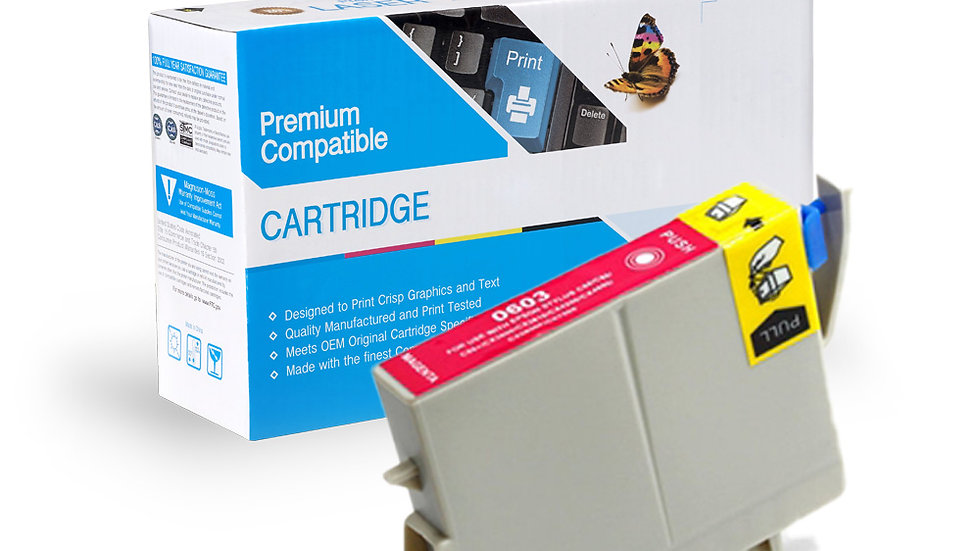 Epson Remanufactured Ink Cart T060320