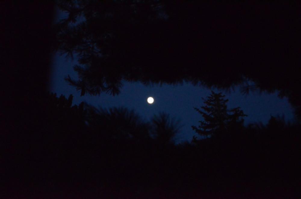 Full Moon July 2017