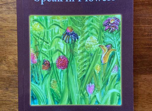 New Book News: Now We Will Speak in Flowers by Micki Blenkush
