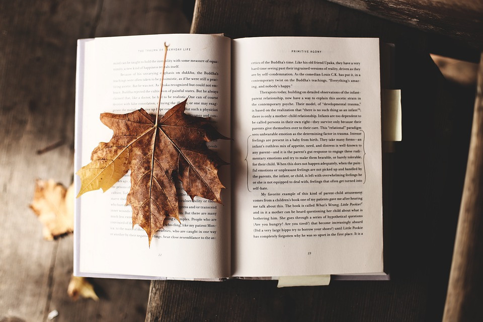 An open book with autumn leaves