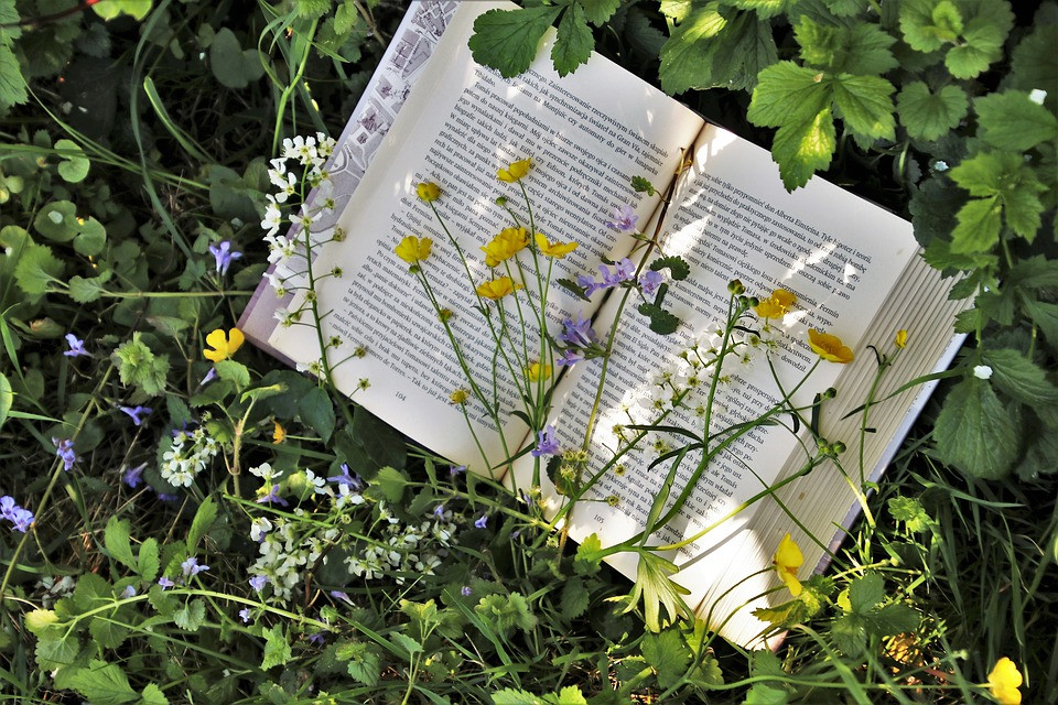 Image of book surrounded by greenery and flowers