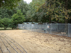 Main Yard