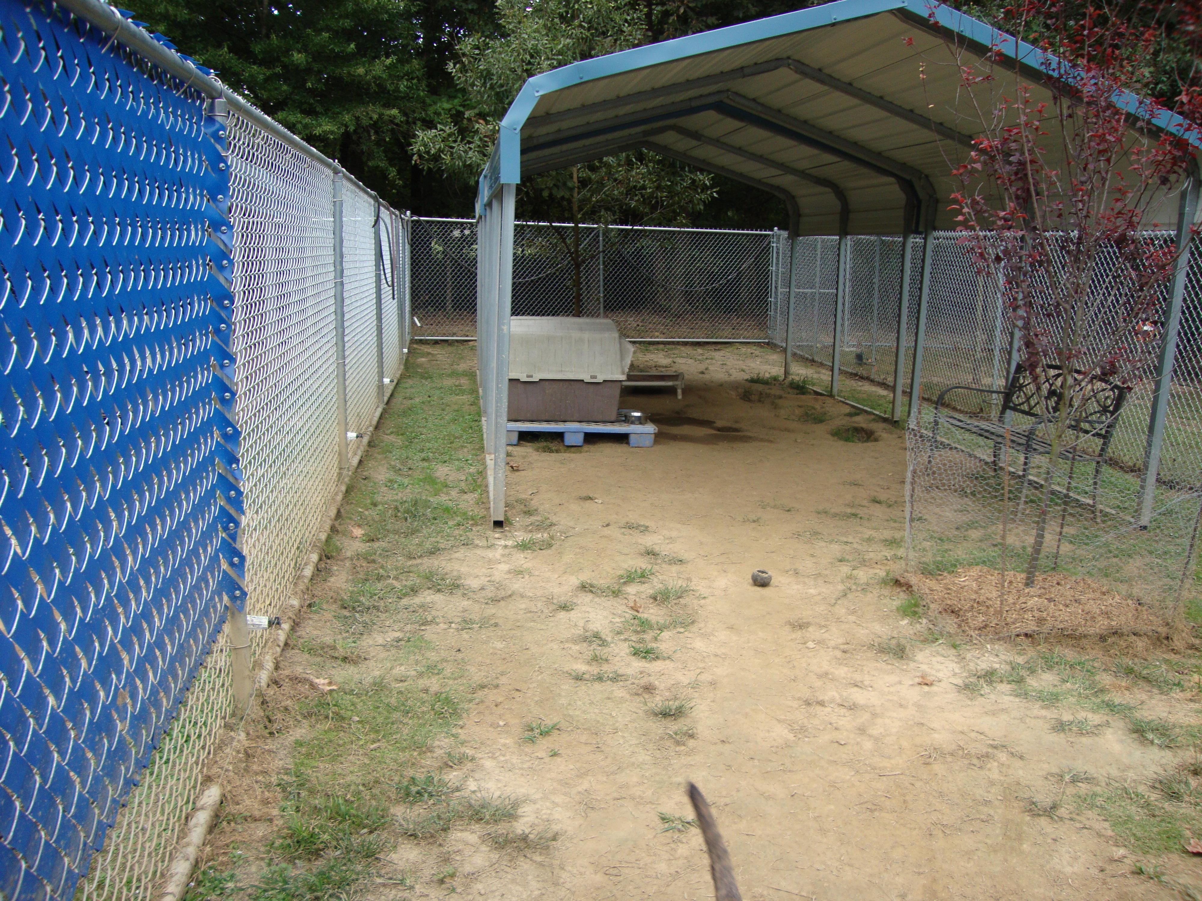 Main Yard - Example #7