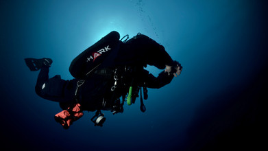 Shark Rebreathers Photos Valéry PLATON