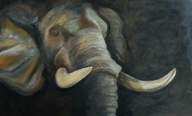 Elephant - Oil Pastels