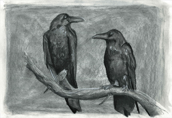Crows - Charcoal