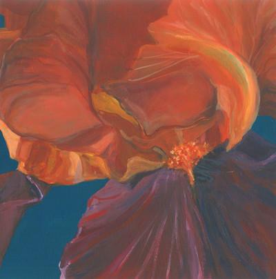 Iris - Acrylic
