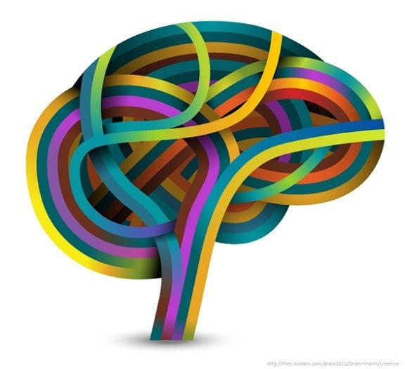 Brain, Behavioral Science