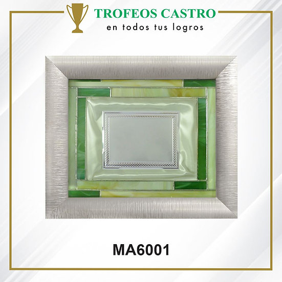 MA6001