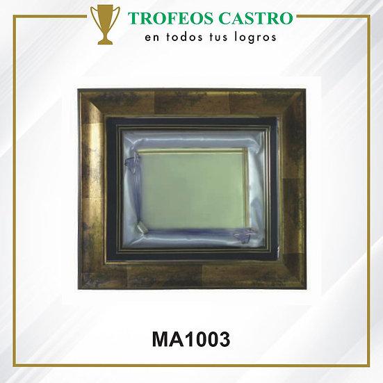 MA1003