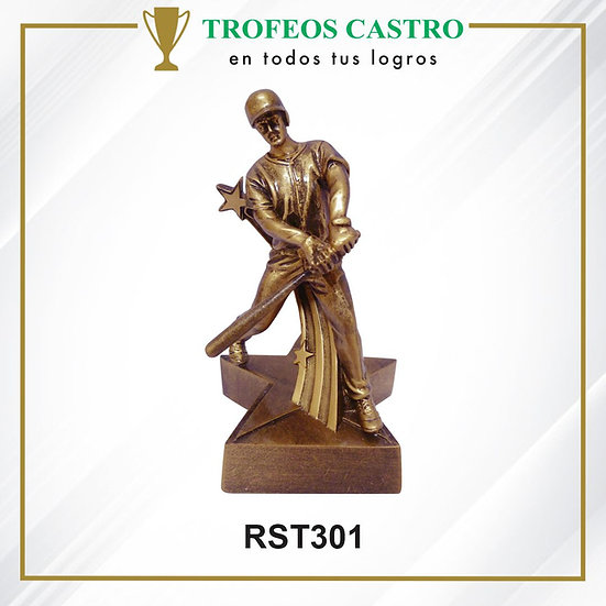RST301