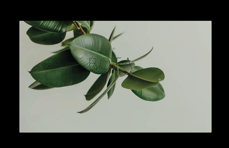 BOTA-1-01.png