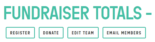 Fundraising page pic - Tabs.PNG