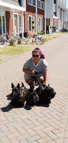 schotse terriers.jpg