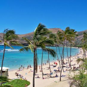 Zwischen Surferparadies und Weinoase -  Aloha aus Hawaii