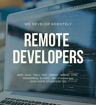 WE DEVELOP REMOTELY.png