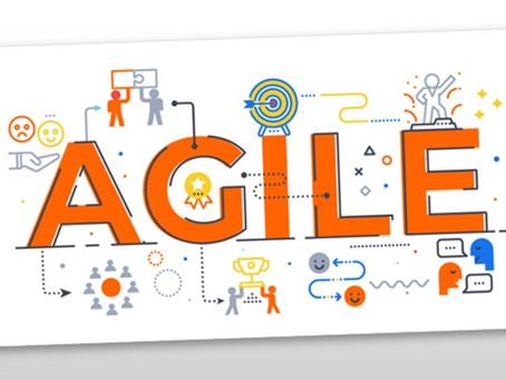 7 Rollen, die dich als Agile Coach & Transformation Consultant in Unternehmen erwarten