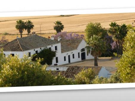 Retreat in der inspirierenden Umgebung Andalusiens.
