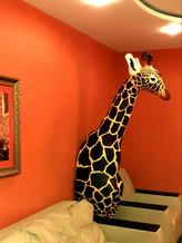 Арт-жираф