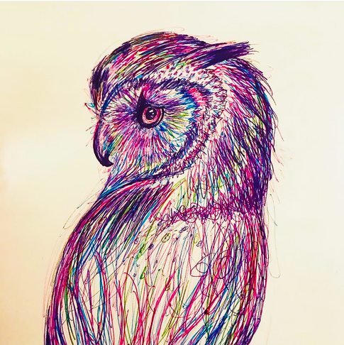 owlpendrawing.png