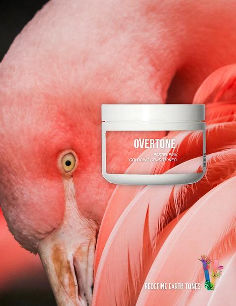 FlamingoPrint_Overtone3.png