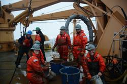 NOAA Ocean Explorers