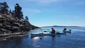 Kelp Surveys August 2021